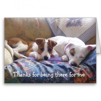 Dogs Thanks for being there Cards