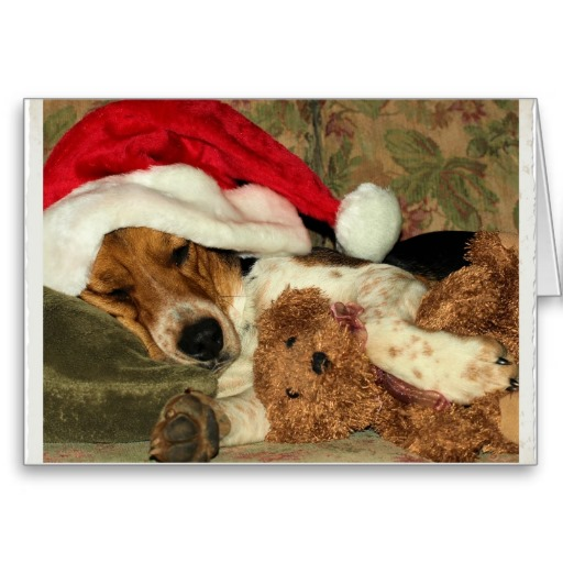 Beagle Claus, Christmas Thank You card