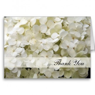 white_hydrangea_thank_you_note_card-reb4f661f850c42cfac2_002