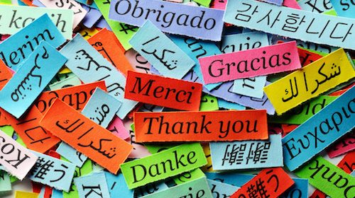 Thank You Note Phrases for Your Cards and Letters